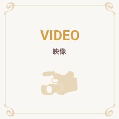 video 映像
